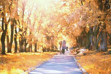 End of summer season in the park Fototapete