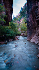 Foto auf Leinwand Forest river Beautiful river on the way to the Kanarraville Falls in Kanarraville, Utah, USA