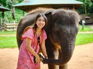 female thai tourist having fun with baby elephant at sanctuary in thailand