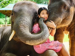female thai tourist having fun with baby and mother elephant at sanctuary in thailand