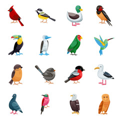 Vector illustration of animal and wild icon. Set of animal and nature vector icon for stock.