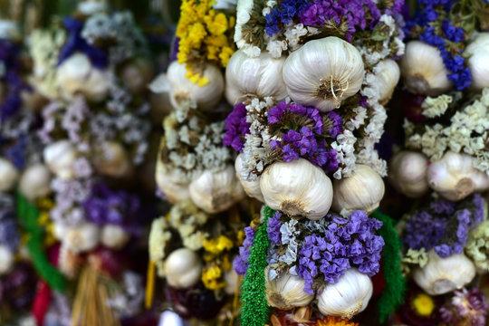 Garlic bunch: Garlic plait with flowers.   Group of bunch. Autumn home decoration.