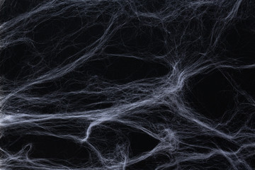 Halloween concept. White fake white wool spiderweb on black background as option for table or photo zone decor.