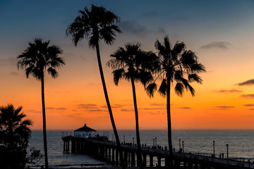 Fototapete - Sunset view of palm trees and pier on Manhattan Beach in evening in Los Angeles, California, USA. Vintage processed.