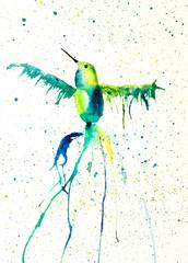 Watercolor painting of colibri. Handmade