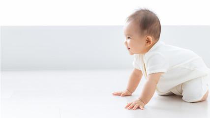 Fototapeta 赤ちゃん