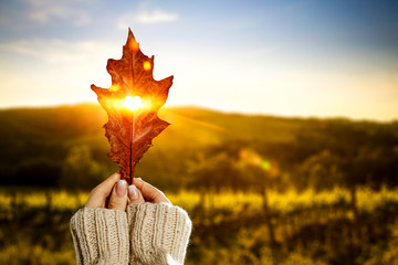 Autumn leaf and woman hand with sunset time.