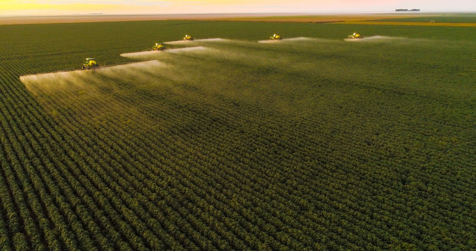 Spraying pesticides and fertilizers on sunset cotton crop