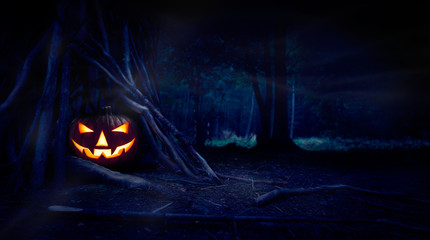 A single halloween Jack O Lantern hiding in a wood shelter, campsite on the forest floor on the left side of frame with space for text on the right.