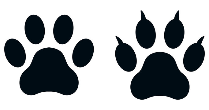 Set of paw prints