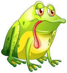 Sick frog on white background