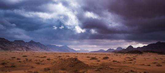 Foto op Plexiglas Diepbruine visiting the magic Wdi Rum desert in Jordan, Middle East