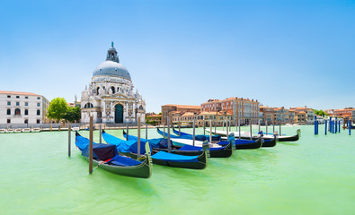Panoramic view of traditional venetian gondolas moored in water of Grand Canal in front of Basilica di Santa Maria della Salute church, Venice, Italy, in bight sunny day