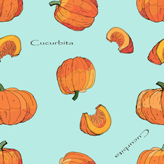 seamless background of isolated pictures of whole pumpkins and pieces, doodles and inscriptions