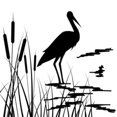 drawing in black, silhouette of storks and grass