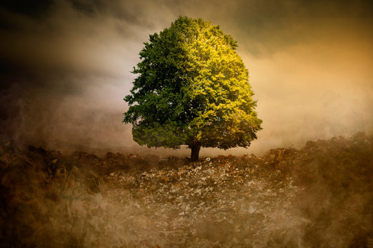 Lonely Tree in unreal surreal environment garbage nature pollution CO2