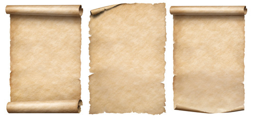 Paper scrolls or vintage parchments set isolated on white