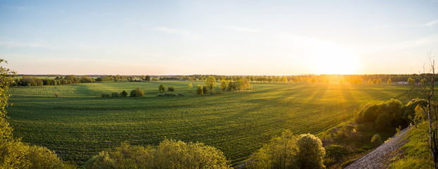 Beautiful sunset at summer day. Amazing nature landscape. View from the top of the hill. Green fields and trees. Fotoväggar
