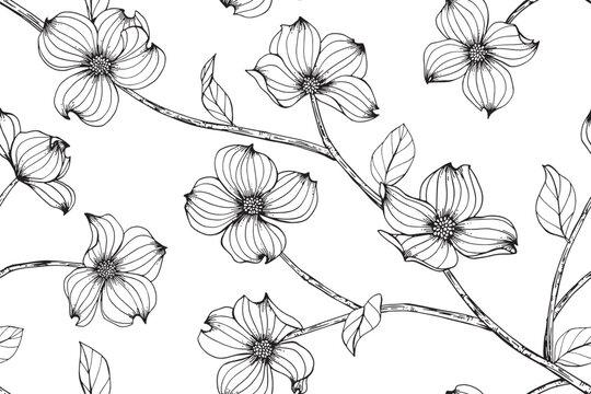 Dogwood flower and leaves pattern seamless background illustration.