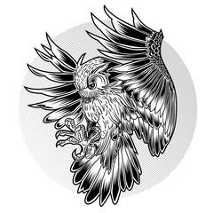 Bird Owl Wing Black Fly Vector Illustration