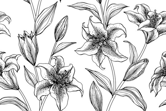 Lily flower and leaves pattern seamless background illustration.