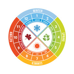 4 season circle diagram chart with icon sign and month time vector design