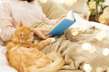 Fototapete - hygge, literature and people concept - red tabby cat and female owner reading book in bed at home