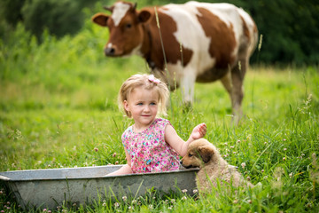 A little girl in the tub washes on a green meadow and cow and little puppy nearby in the meadow.. Simple photo of farm rural life. Children's spontaneity and joy.