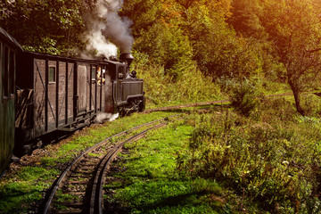 Coal wood burning steam locomotive of Mocanita, popular tourist attraction in Maramures, Romania Wall mural