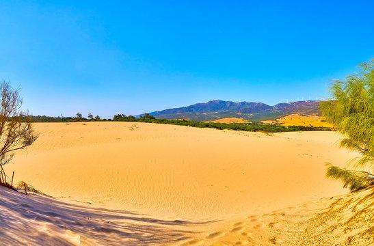 Valdevaqueros Dune. El Estrecho Natural Park. Tarifa, Cadiz. Andalusia, Spain.
