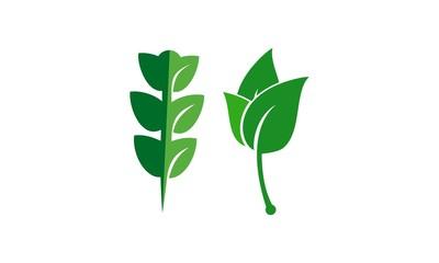 leaf template logo