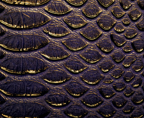 Fototapete - Abstract image of snake leather, as background.