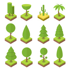 Isometric tree set. Big and small trees, pine, shrubs, felled trees, cacti, palms. Vector illustration.