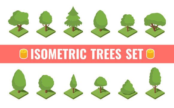 Big isometric tree set. Big and small trees, pine, shrubs, felled trees, cacti, palms. Vector illustration.