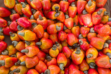 Ripe cashew fruits for sale at a fruit and vegetable market in Arembepe, Bahia - Brazil