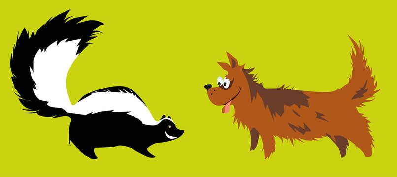 Fearless dog meeting a skunk, EPS 8 vector illustration