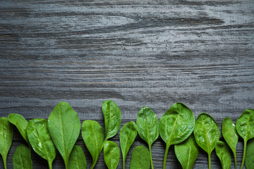 Fresh green healthy spinach on dark wooden table, flat lay. Space for text Wall mural