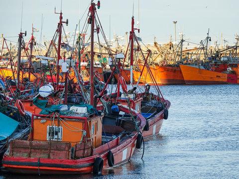 Port of Mar Del Plata, Buenos Aires, Argentina