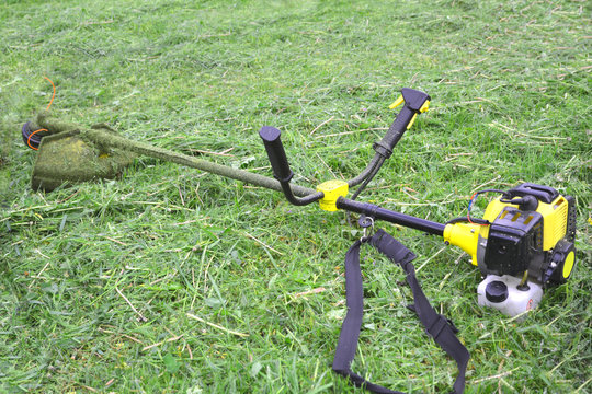 Cordless grass trimmer used for weed removal
