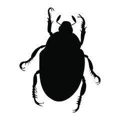 Japanese beetle silhouette isolated on white background. Vector.