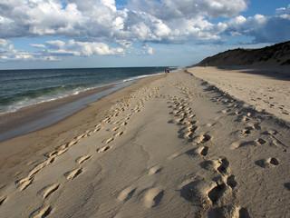 Cape Cod, USA: menschenleerer Strand bei Wellfleet