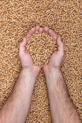 clasped hands contain natural wood pellets