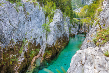 Panorama of the Grand Canyon of Soca River. In the Triglav National Park near Bovec, Gorizia, Slovenia, Europe.