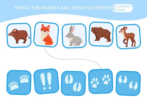 Matching children educational game. Match of animals and their footprints . Activity for pre sсhool years kids and toddlers.