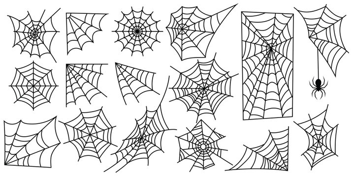 Set of web silhouettes. Spider web collection for halloween. Black and white illustration of elements for decor for the celebration of Halloween.