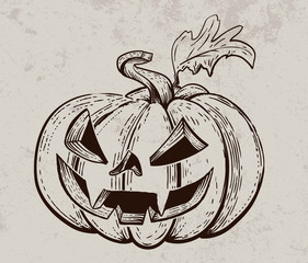 Vector Halloween pumpkin. Hand drawn illustration. Vintage engraving element. Scary pumpkins sketch.