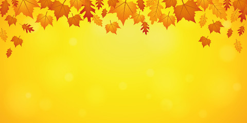 autumn orange and yellow falling leaves on yellow background vector illustration EPS10