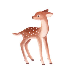 Cute little deer kid on a white background. Hand drawn illustration.