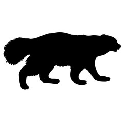 Silhouette of Wolverine on a white background
