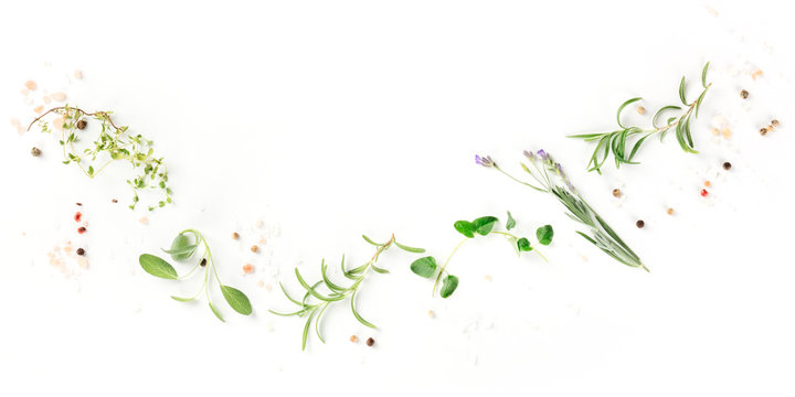 A panorama of culinary aromatic herbs on a white background, a flat lay composition with copy space, a cooking design template
